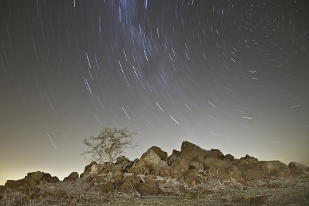 Star trails behind a dry thorn bush tree on a round rock hill in a desert landscape  photo