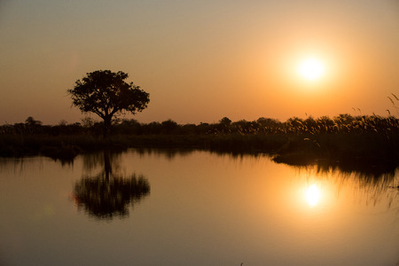 A calm sunset image with the reflection of a tree in the water of a large dam or lake.