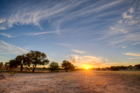 Deep colours as the sun sets over a dry riverbed in the Kgalagadi between South Africa and Namibia Reklamní fotografie