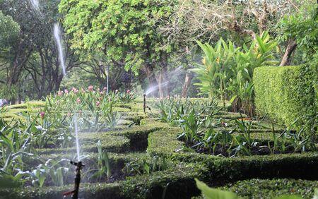 Water springer turning around the garden.