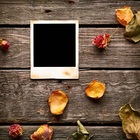 flower leaf: Blank instant photo with roses and petals. On old wood background. Stock Photo