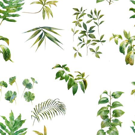leafs: Watercolor illustration of leaf, seamless pattern on white background