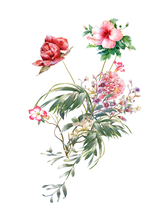 petal: watercolor painting of leaves and flower, on white background