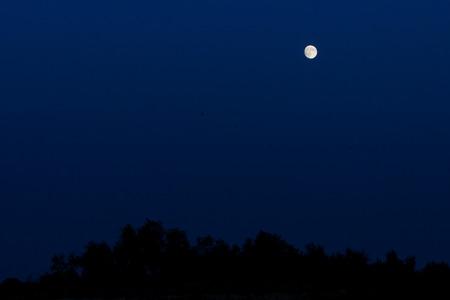 tucker: Xinjiang Wusu Gul Tucker Zi Garr lake, the blue sky