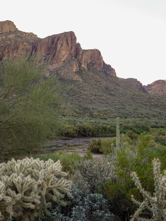 Beautiful scenic view of Tonto National Forest