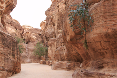 siq: The Siq leading up to the Trausury in Petra, Jordan