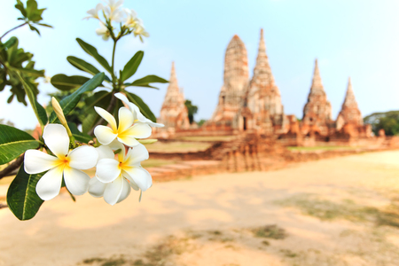 sacked: Temple Phra Nakhon in Ayutthaya, Thailand Stock Photo