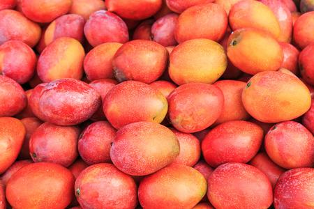 mango fruta: Mangos fondo Foto de archivo