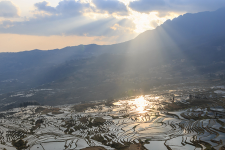 Sunrise over YuanYang rice terraces in Yunnan, China