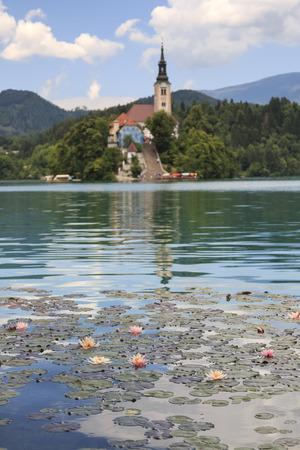 eco tourism: Lake Bled in Slovenia with Cerkev Marijinega Vnebovzetja Church in island Stock Photo