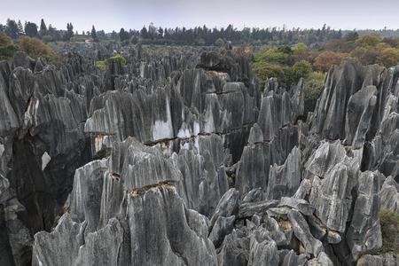 中国雲南省昆明市の石林のパノラマビューもシリンとして知られる