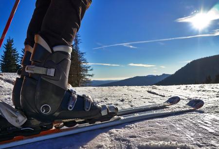 Skier legs close up. 스톡 콘텐츠
