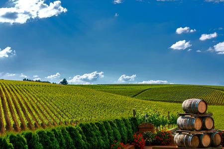 Vineyard hills and wine barrels