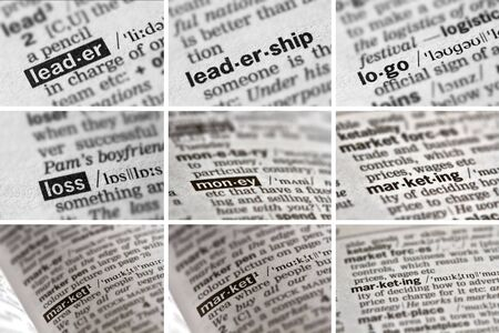 loss leader: Business Finance Words in Dictionary. Stock Photo