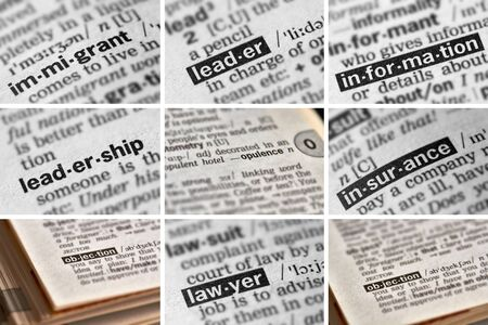 opulence: Politics Words in Dictionary Stock Photo
