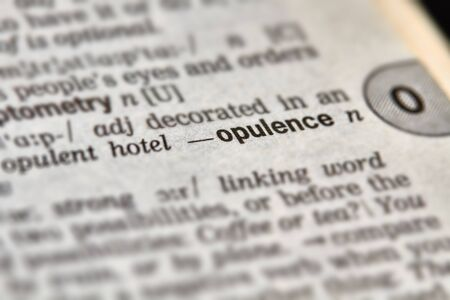 opulence: Opulence Word Definition Text in Dictionary Page