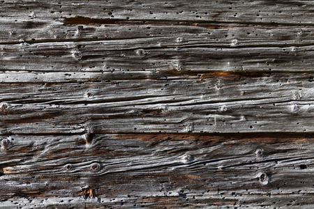 holey: Old holey wooden boards.