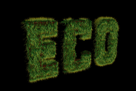 Eco grassy inscription on a black background made in 3d Stock Photo