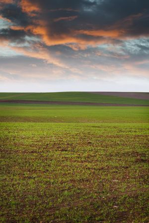 Agriculture field Stock Photo - 6734759
