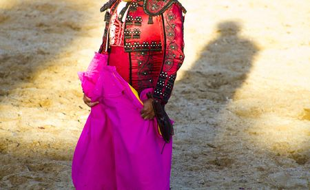 bloodsport: bullfighters costumes with details, Madrid, Spain.