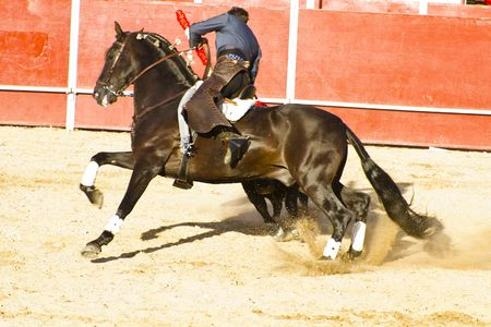 Bullfight on horseback. Typical Spanish bullfight. Stock Photo
