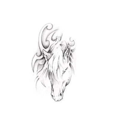 Sketch of tattoo art, horse Stock Photo - 8207177