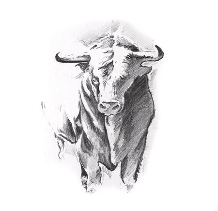toro: Disegno del tatuaggio arte, toro Archivio Fotografico