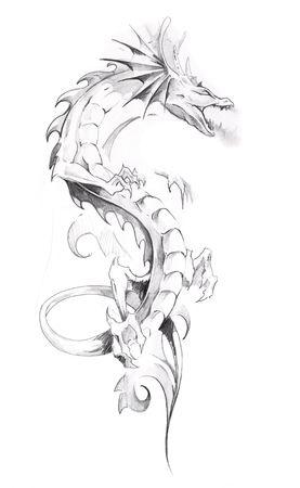 tatouage dragon: Croquis d'art du tatouage, dragon