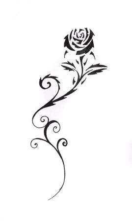rose tattoo: Sketch of tattoo art, black rose