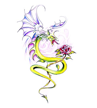 rose tattoo: Sketch of tattoo art, dragon and rose