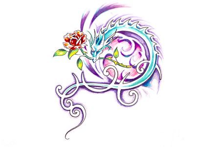 Sketch of tattoo art, dragon with rose photo