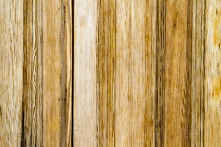 Closeup wood door with textured material photo