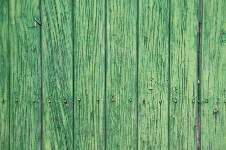 Green wooden panels. Ancient door photo