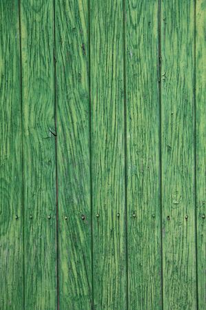 Green paint peeling from a wooden panel door. Aged texture photo
