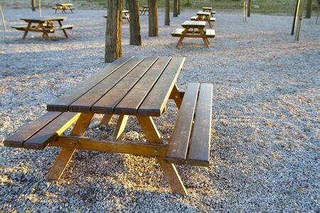 park bench at sunset in a forest Stock Photo - 12164716