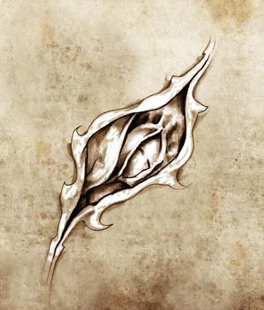 tatuaje dragon: Boceto de arte del tatuaje, el drag�n debajo de la piel