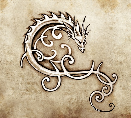 flying dragon: Sketch of tattoo art, decorative dragon