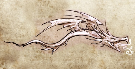 Sketch of tattoo art, stylish decorative dragon photo