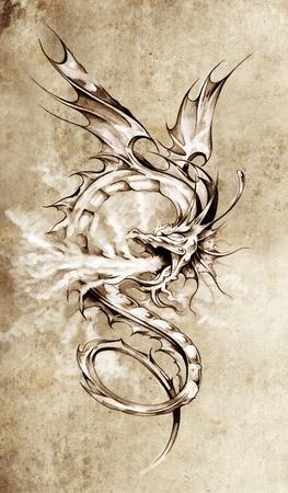 tattoo girl: Sketch of tattoo art, stylish dragon illustration