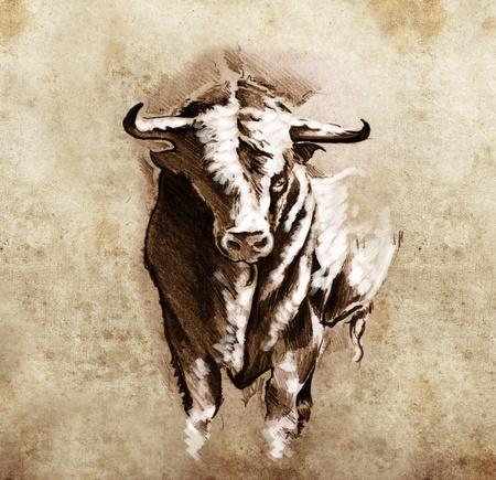 Sketch of tattoo art, spanish bull, dangerous bull with beaked horns