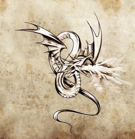 tatouage dragon: La figure de dragon m�di�val. Croquis de l'art du tatouage sur papier antique