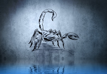 Scorpion tattoo on blue wall with water reflections photo
