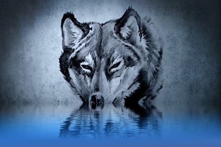 Tattoo of a wolfs head with water reflections photo