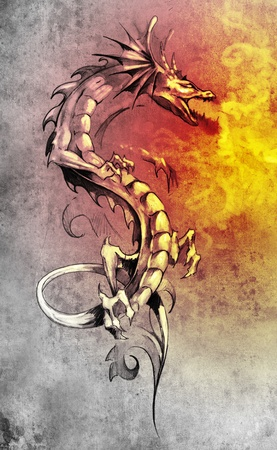 Sketch of tattoo art, big medieval dragon, fantasy concept photo