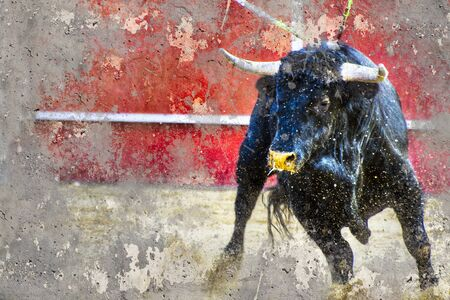 camouflage pattern: Artistic image with background texture bullfight