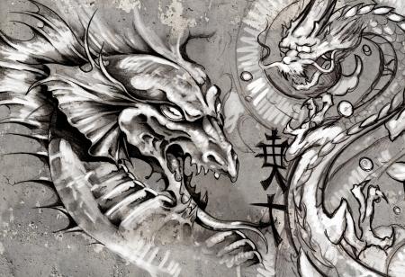 dragon tattoo: Dragons, illustration tatouage sur mur gris