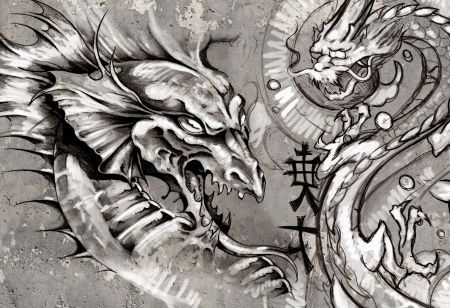 Dragons, tattoo illustration over grey wall illustration