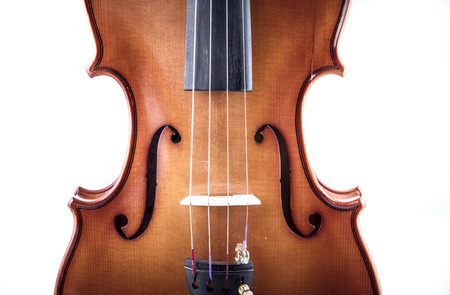 Harmony, Violin front view isolated on white, vintage photo