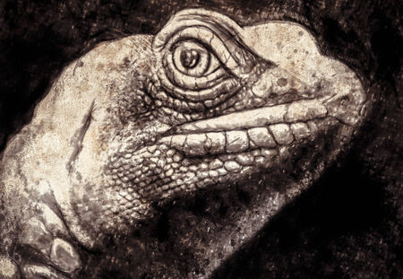 Sketch made with digital tablet of lizard head in sepia photo