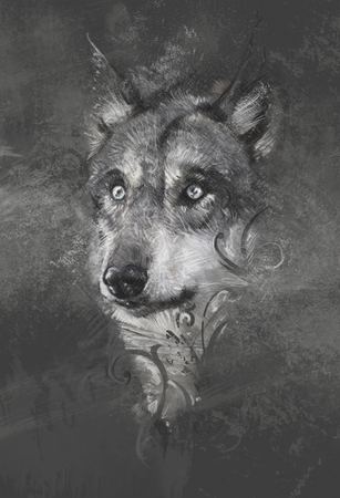 snarling: Wolf illustration. Tattoo design over grey background. textured backdrop. Artistic image Stock Photo